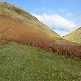 Grey Mare's Tail 2